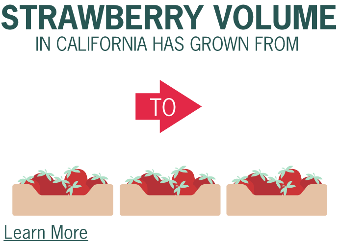 Strawberry volume in California has grown from 195 million trays in 2016 to 222 million trays in 2018.