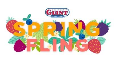 CG_Spring_Fling_Promo_Logo-1