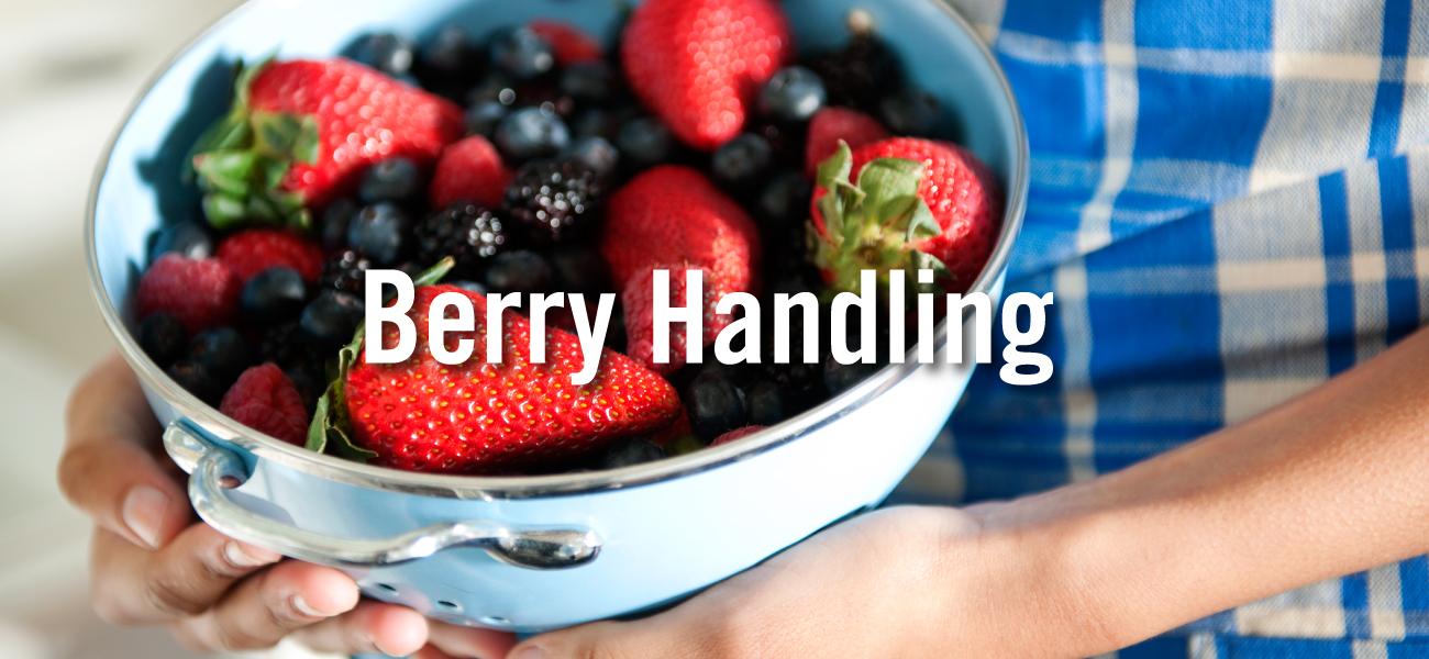 Berry Handling
