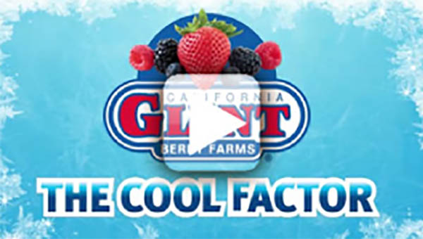 The Cool Factor - Cold Chain Management
