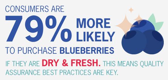 Trade-slides_Blueberry-2.png